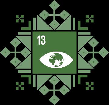 Цель 13