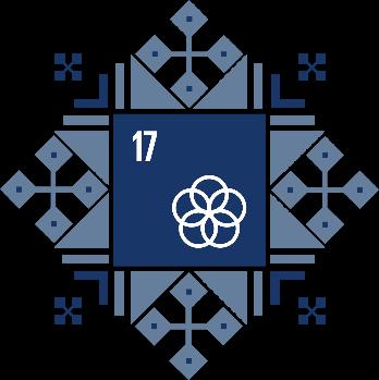 Цель 17